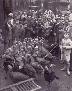 1940 aprox Venta de pavos en una calle de Madrid durante los dias de Navidad (Díaz Casariego). Años 40
