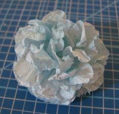 http://kayla.blox.pl/2012/05/Najlatwiejsze-kwiatki-w-swiecie.html