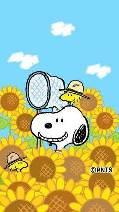 Peanuts Cartoon, Cartoon Dog, Peanuts Snoopy, Cartoon Drawings, Cartoon Characters, Charlie Brown Quotes, Charlie Brown Y Snoopy, Snoopy Images, Snoopy Pictures