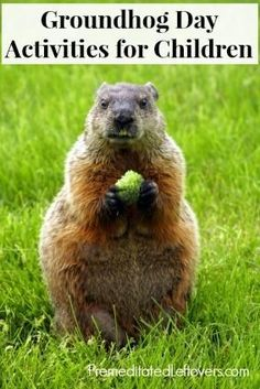 Groundhog Day Activities for Kids - games, educational activites, recommended books, and shadow play