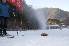 Una tortuga vence a un conejo en carrera de esquí en China - Cachicha.com