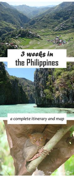 All you need to know about getting from A to B in the Philippines, detailed information about transport + map. Highlights: hiking in Banaue (Luzon), island hopping in El Nido (Palawan) and sightseeing on Bohol. Voyage Philippines, Philippines Vacation, Les Philippines, Philippines Travel Guide, Phillipines Travel, Manila, Phuket, El Nido Palawan, Palawan Island