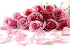 Scattered roses wallpaper, Rose Flower images, Rose Pictures and Backgrounds Happy Mothers Day Images, Happy Mother Day Quotes, Happy Images, Flower Images, Flower Pictures, Renan E Ray, Beautiful Pink Roses, Pretty Roses, Beautiful Bouquets