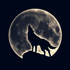Howling wolf, full moon - Buy this stock illustration and explore similar illust. - Howling wolf, full moon – Buy this stock illustration and explore similar illustrations at Adobe - Back Tattoos For Guys, Full Back Tattoos, Back Tattoo Women, Full Moon Tattoos, Wolf Silhouette, Wolf Tattoo Design, Tattoo Designs, Wolf Photos, Wolf Pictures