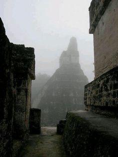 Tikal Tikal, Jaguar, Inca Empire, Conquistador, Next Holiday, Mayan Ruins, My Land, Riviera Maya, South America