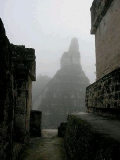 Tikal- awesome picture.