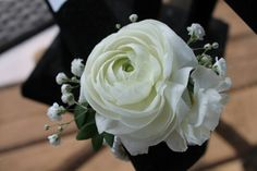 Ranunculus  and baby's breath corsage