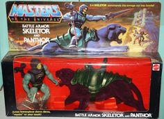 Battle Armor Skeletor & Panthor Gift Set