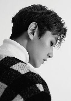 Baekhyun - EXO - Álbum FOR LIFE (2016)