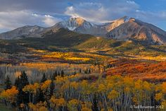Colorado sunrise on Mount Sopris with fall foliage in the foreground