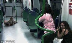 http://www.prankskingdom.it/zombie-in-metropolitana/