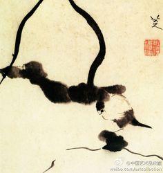 【 清 八大山人 《荷叶翠鸟》 】册页,纸本,水墨,37.8×31.5cm,上海博物馆藏。 以水墨泼写出两柄倒垂的荷叶,叶下小鸟蜷一足而立。构图、笔墨简略,造型夸张,湿润轻灵之气盎然于整个画面。