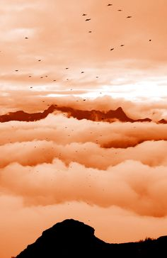 Wolken, Berge und Vögel beim Sardona Trail am 30.08.2014