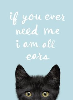 Cat Quotes, Poem Quotes, Qoutes, Outing Quotes, Cute Animal Pictures, Cool Pets, Cheer Up, Inspirational Thoughts, How I Feel