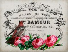 Digital Form, Digital Image, Background Vintage, Shabby Chic Style, Us Images, Graphic, All Design, French Vintage, Decoupage