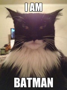 da na na na da na na na, Batman!