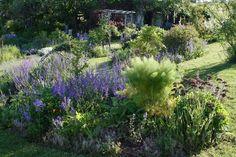 Jardin de Jammary, (c) Laurence Saunois Lauréate du concours Jardiner autrement 2011