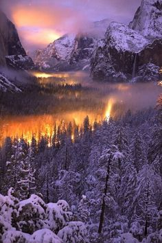Yosemite Park. The scenery is so perfect it is as if one is in a dream landscape.