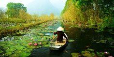 Vietnam - mercado flotante