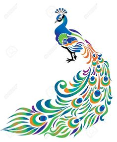 peacock tail down drawing - Google Search