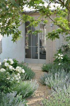 allée de jardin en gravier décoratif embellie par roses blanches