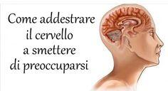 Cervello umano: Come Addestrarlo A Smettere Di Preoccuparsi Cervello L'essere umano per sua natura è portato a preoccuparsi di tutto. Cerca s