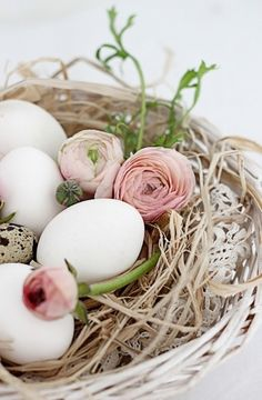 Would make a very lovely accent to hard boiled eggs at German Easter breakfast <3