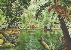 47 Million years ago, what is now messel Germany, was a rainforest with an inland sea. From the rich fossil record we can see there lived animals like t. Idas World Prehistoric Wildlife, Prehistoric World, Jungle Scene, Jungle Art, Prehistory, Habitats, Painting & Drawing, Concept Art, Nature