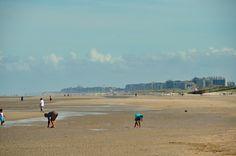 Afbeeldingsresultaat voor strand de panne