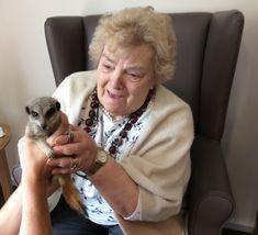 Home Safari visits Birch Green - Springhill Care Group Lancashire