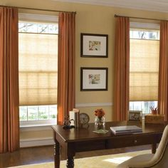 """Levolor Accordia 7/16"""" Designer Double Cell Shade in Terra Cotta. The crisp folds of the cellular fabric will give your windows a soft, classic look and added energy efficiency."""