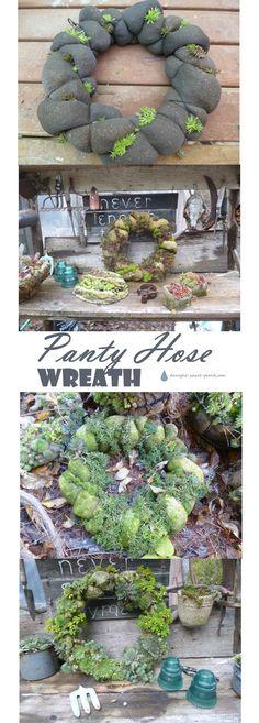 Panty Hose Wreath - seriously?  DIY instructions... Garden Art   Succulents