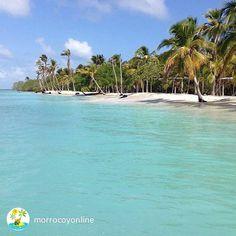 #BuenosDíaVenezuela y ciudadanos del globo feliz inicio del fin de semana. Desde Cayo Sombrero les deseamos lo disfruten con respinsabilidad... #FotoTomadaDe @morrocoyonline #CayoSombrero #Morrocoy #Venezuela #Playa #FinDeSemana #Parque #Belleza #Naturaleza #Amor #Paz #Reláx #Beach #Weekend #Live #Love #Life #Peace #Blue #Culturísima by culturisima