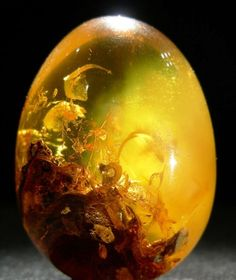 Hidden world: Another type of fossil resin, Colombian Amber, in egg form (fossils are more common in Dominican & Columbian resins).