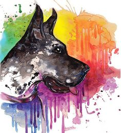 Great Dane dog Watercolor Print Home decor dog by BasovaArt