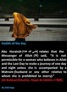hadith of the day the islamic dua like share and comments Islam Beliefs, Islam Hadith, Islam Religion, Islam Quran, Alhamdulillah, Islamic Qoutes, Islamic Teachings, Islamic Inspirational Quotes, Religious Quotes