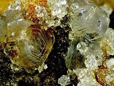 Hydrotalcite avec Phillipsite. Stradnerkogel Wilhelmsdorf Steiermark Österreich Taille=4.2 mm Copyright Bebo