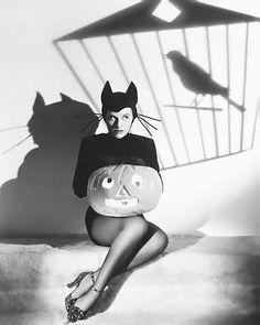vintage Halloween pin up cat