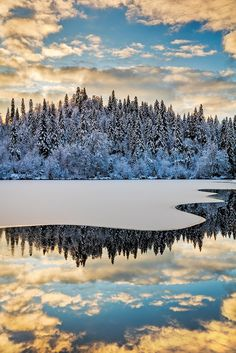 Magical Winter Morning - At Lake Cresta just before the lake is completely frozen... Nice reflections and a nice winter forest with a white coat.