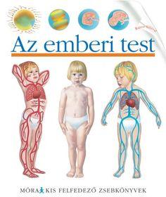 Az emberi test - Kis felfedező zsebkönyvek…