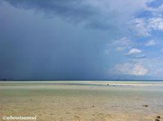 В Натоне прошёл мощный и такой долгожданный дождь! 15 минут - и снова вышло солнце и через полчаса все было сухо