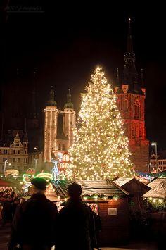christmas tree Halle/Saale