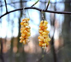 Baltic amber earrings amber earrings  amber silver earring