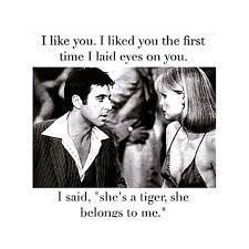 Image result for scarface she's a tiger quote