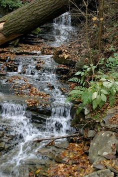 Silver Cascade Fall in N. New Hampshire White Mountains