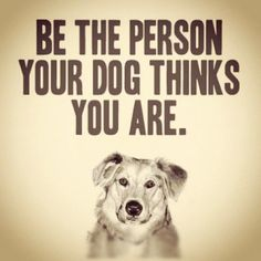 be the person LUCKY dogs think you are…. a good, loving person