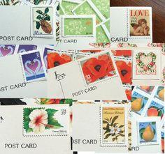 100 standard postcards $100