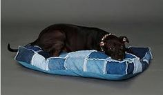Sookie's Bed in Master Bedroom so she doesn't feel neglected when she can't snuggle on the bed ~ Patched Denim Dog Bed from FreePeople - Another use for used jeans :) Jean Crafts, Denim Crafts, Upcycled Crafts, Repurposed, Pet Beds, Dog Bed, Denim Ideas, Animal Projects, Animal Crafts
