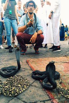 """Marrakech, Morocco chatocastillo """"Marrakech, in the Medína, with the cobras"""""""