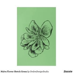 Shop Malva Flower Sketch Green Acrylic Print created by OmbreDesignStudio. Green Wall Art, Green Art, Wood Wall Art, Wall Art Decor, Flower Sketches, Elephant Gifts, Wall Decals, Art Pieces, Interior Design